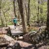 Passage d'un pont en bois