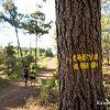 Randonnée dans la forêt sur sentier balisé