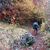 Randonnée pédestre sur le Plateau de l'Aubrac en Aveyron (12) La Voie Romaine
