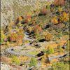 Route qui monte au barrage des Gloriettes