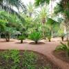 Balade dans le Jardin Majorelle à Marrakech