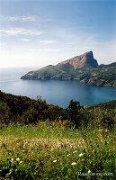 Randonnée au Capo Rosso en Corse