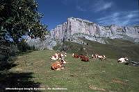 Activités outdoor : Pic Oueillarisse
