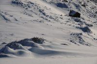 la cabane d'Andorre