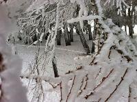 Activités outdoor : Raquettes sur le plateau de l'Aubrac entre Aveyron et Lozère: neige au rendez vous