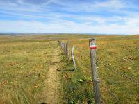 Activités outdoor : Randonnée au Signal de Mailhe-Biau. Département Lozère