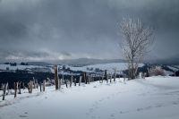 Activités outdoor : Balade dans la neige entre Aveyron et Loz�re