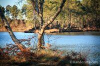 Activités outdoor : Hostens Balade 1 : Tour du petit lac de Bernadas