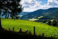Vallée du Bonhomme - Vosges