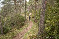 On se retrouve dans la forêt
