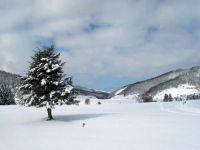 Activités outdoor : Randonnée en raquettes à neige à Payolle