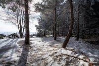 Activités outdoor : Plateau de l'Aubrac