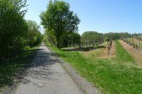 Activités outdoor : Balade en v�lo sur la Voie Verte Roger Lap�bie en Gironde