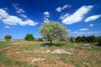 Activités outdoor : Le Baume Auriol