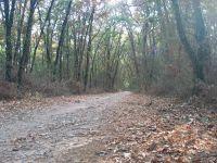 Activités outdoor : Randonnée nue, randonue en montagne et sur les sentiers