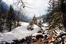 Vallée de Lutour