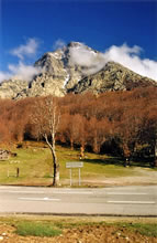 Col de Vizzavona