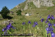 Cabane d'Arrégatiou