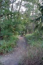 Balade dans le parc de Bourran 3