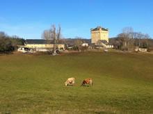 Randonnée autour de la Tour de Masse en Aveyron