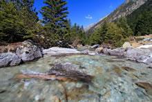 Vallée de Lutour dans les Hautes-Pyrénées