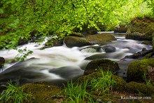 Randonnée dans la forêt de Huelgoat