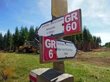 GR 6 et GR 60 se croisant sur le plateau de l'Aubrac