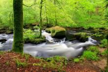 Balade dans la forêt de Huelgoat en Bretagne