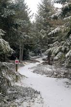 Circuit de randonnée : sentier botanique de Laguiole