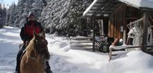 Randonnée équestre dans la neige au Québec