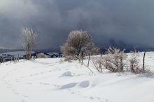 Paysage d'Aubrac sous la neige