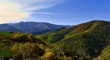 Trail dans les Cévennes
