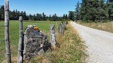 GR de Pays du Tour des Monts d'Aubrac