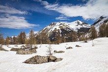 Mont Pelat depuis le lac d'Allos