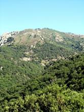 Canyoning et Descentes en rappel au Massif du Caroux - Espinouse en Haut Languedoc
