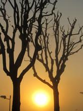 Lever de soleil sur Rodez, randonnée balade du tour de Layoule