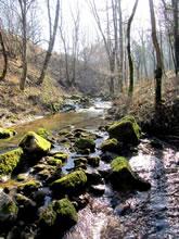 Balade au Domaine de Combelles, près de Rodez en randonnée