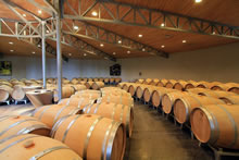 Le vin dans les tonneaux à Saint-Emilion