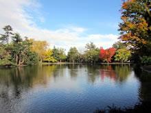 Le Parc Bordelais, Bordeaux