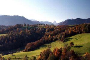 Automne en vallée d'Ossau.
