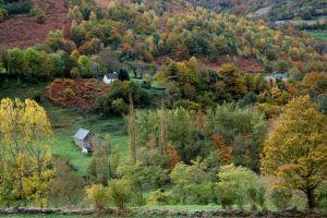 Automne en vallée d'Aspe