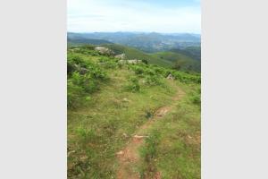 Chemin qui mène au Mondarrain dans le Pays Basque
