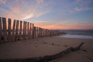 L'abécédaire des Dunes du Cap Ferret