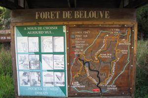 Départ de la randonnée dans la forêt de Bélouve