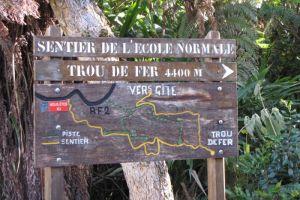 Randonnée à travers la forêt de Bélouve