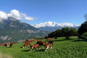 Le Mont Blanc, vu d'au dessus de Sallanches, Alpes Françaises