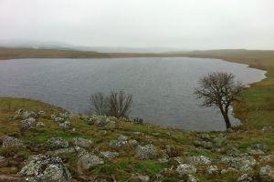 Lac de Saint Andéol, Aubrac, randonnée en Lozère
