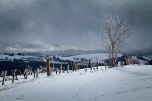 Balade dans la neige entre Aveyron et Lozère