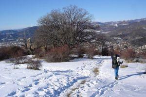 les basses bâties en hiver