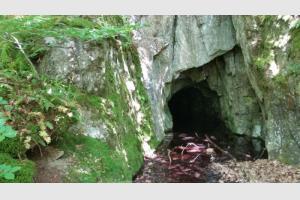 Grotte dans la forêt